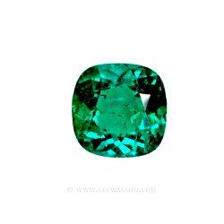 Colombian Emerald 10014