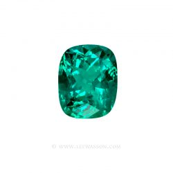 Colombian Emerald 10043