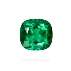 Colombian Emerald 10041